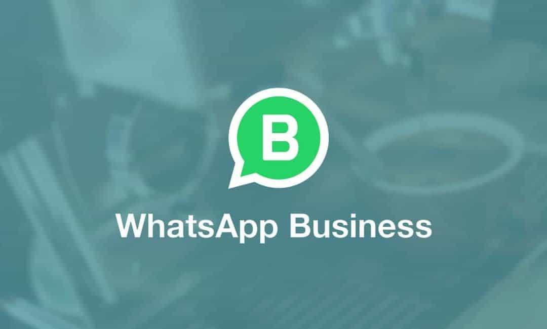 WhatsApp Business gelanceerd in Nederland