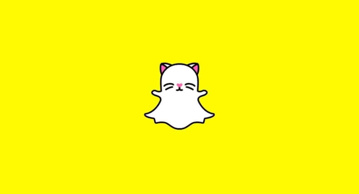 Snapchat selfie-lens voor katten